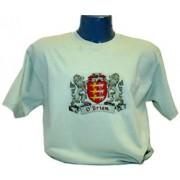 Irish Coat of Arms Tee Shirt Mist Green