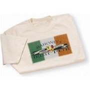 Irish Coat of Arms Pub Tee Shirt Natural