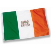 Irish Coat of Arms Flag 3' x 5'