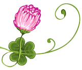 Irish Expressions Store - Gifts - Jewelry - Clothing